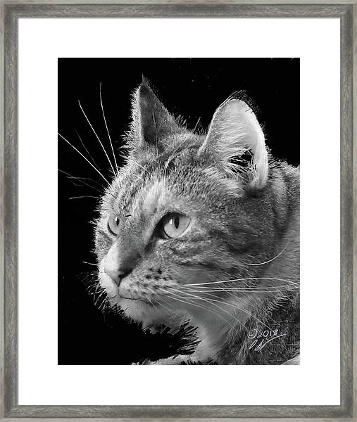 This Is Emma Framed Print