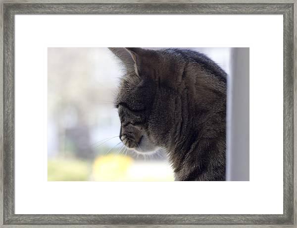 Longing... Framed Print
