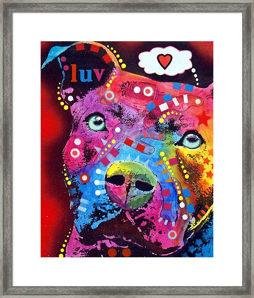 Thoughtful Pit Bull Thinks Luv Framed Print