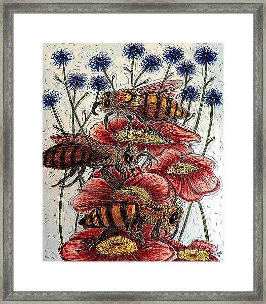 Three Busy Bees Framed Print
