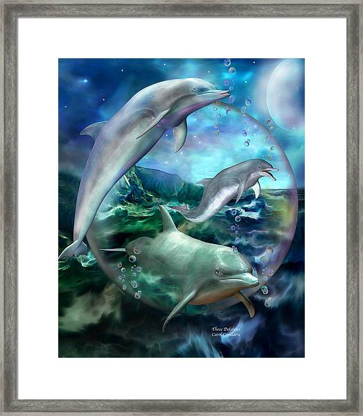 Three Dolphins Framed Print