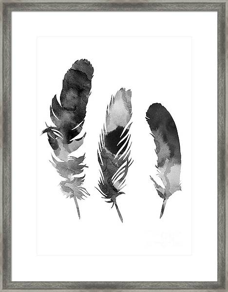 Three Feathers Silhouette Framed Print