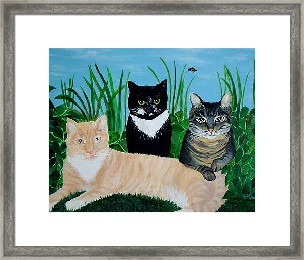 Three Furry Friends Framed Print