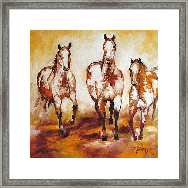Three Pinto Indian Ponies Framed Print by Marcia Baldwin