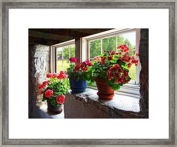 Three Pots Of Geraniums On Windowsill Framed Print