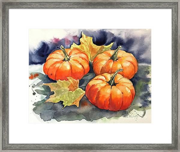 Three Pumpkins Framed Print