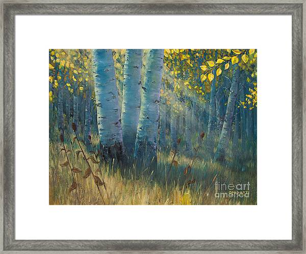 Three Sisters - Spirit Of The Forest Framed Print