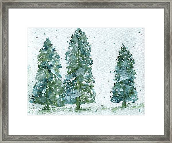 Three Snowy Spruce Trees Framed Print