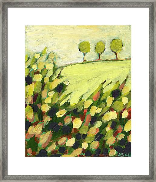 Three Trees On A Hill Framed Print