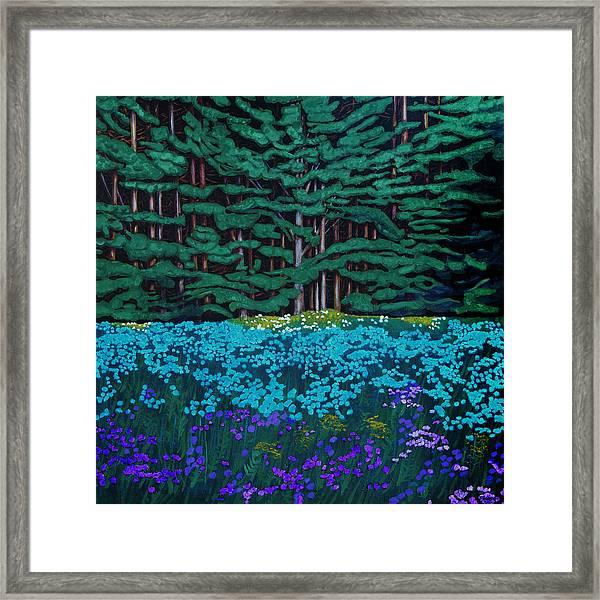 Threshold Of The Woods Framed Print