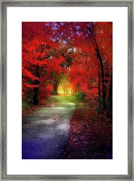 Through The Crimson Leaves To A Golden Beginning Framed Print