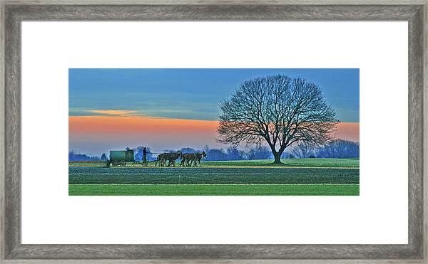 Through The Fields Framed Print