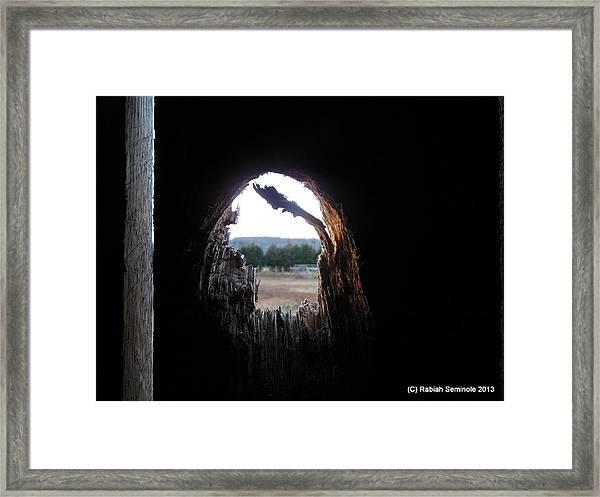 Through The Knot Hole Framed Print