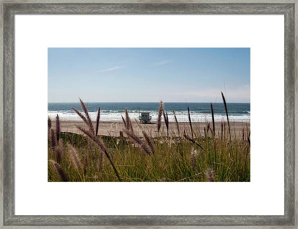 Framed Print featuring the photograph Through The Reeds by Lorraine Devon Wilke