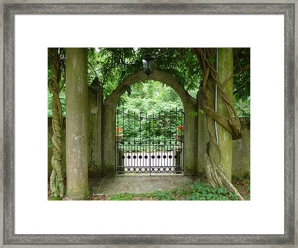 Through The Tuscan Gate Framed Print