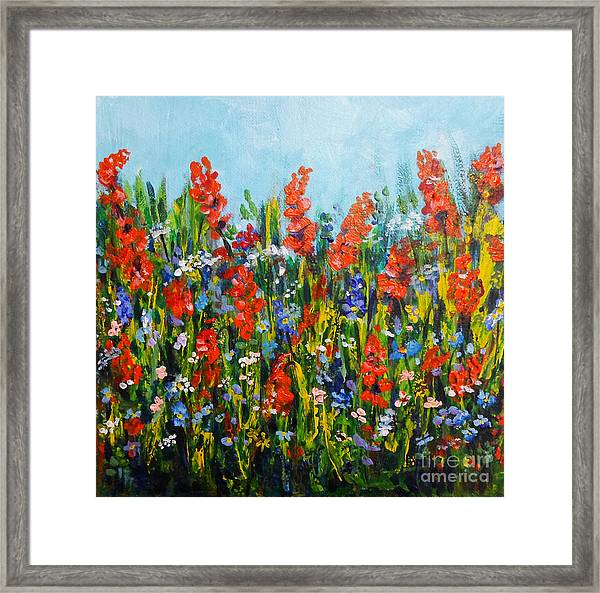 Through The Wild Flowers Framed Print