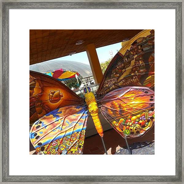 #throwbackthursday Pretty Pic From Framed Print by Dante Harker