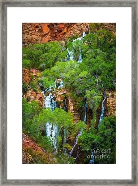 Thunder River Oasis Framed Print