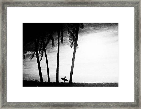Ticla Palms Framed Print