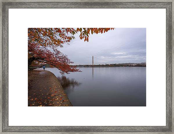 Tidal Basin In Fall Framed Print by Michael Donahue