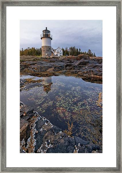 Tide Pools At Marshall Point Lighthouse Framed Print