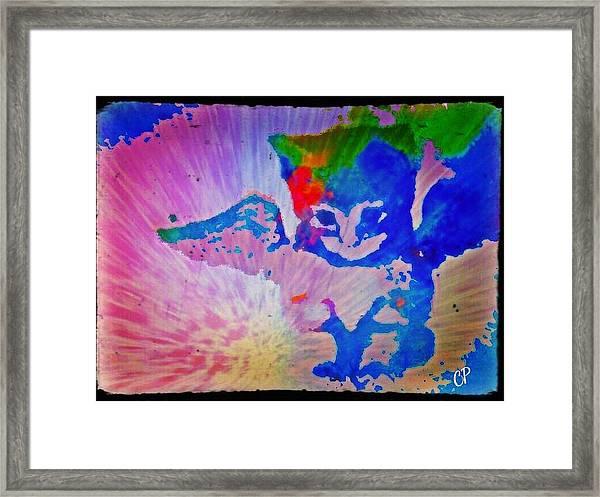 Tie Dye Tiger Framed Print