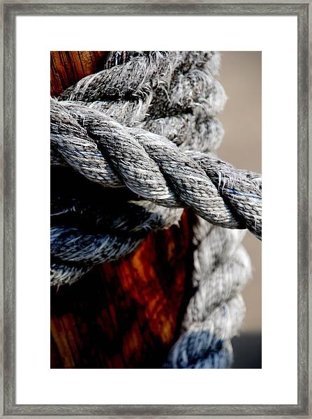 Tied Together Framed Print