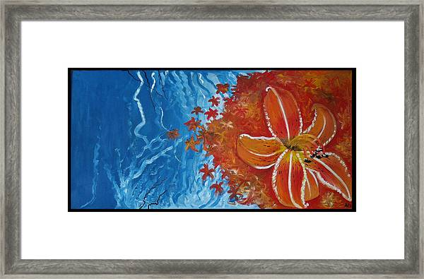 Tiger Lily Framed Print by Alycia Ryan