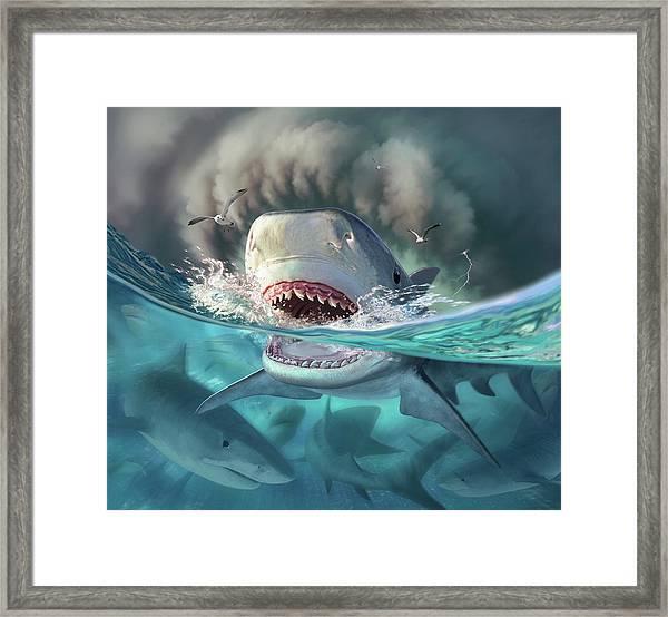 Tiger Sharks Framed Print