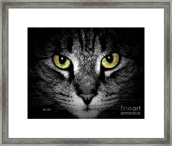 Tiger Tiger 3 Framed Print