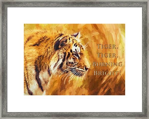 Tiger Tiger Burning Bright Framed Print