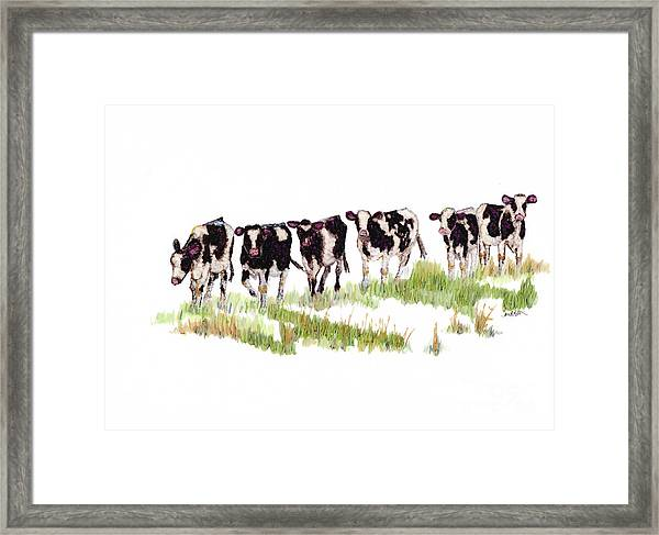 Till The Cows... Framed Print