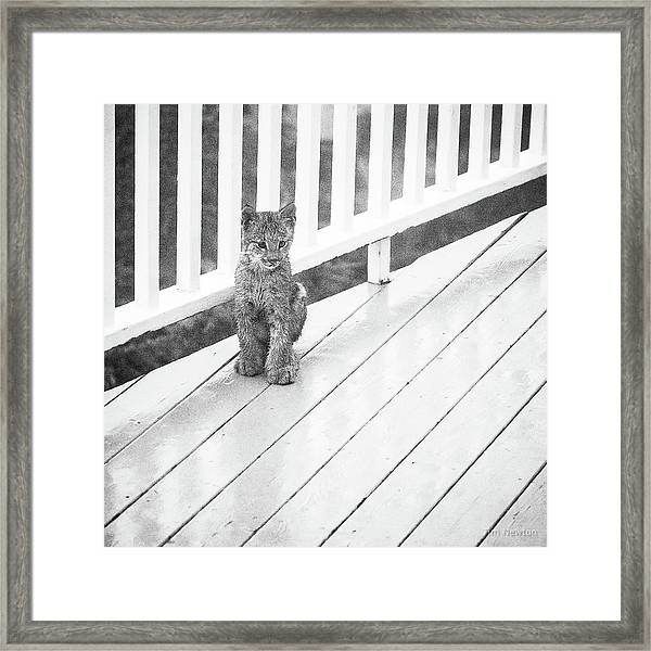 Time Out Bw Framed Print