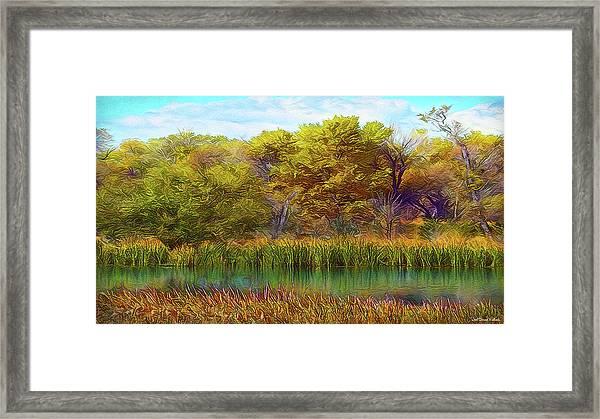 Timeless Pond Framed Print