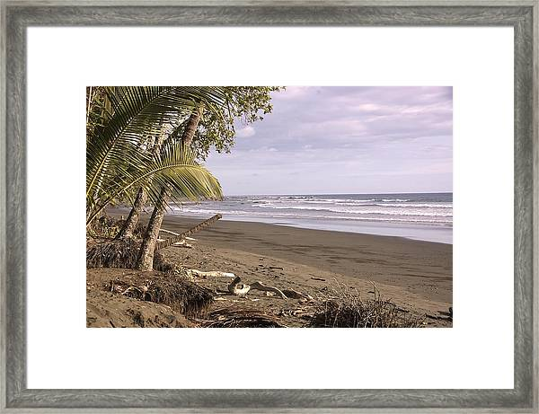 Tiskita Pacific Ocean Beach Framed Print