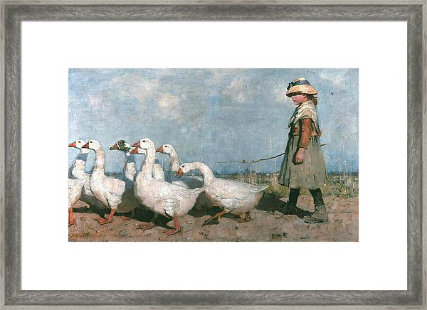 To Pastures New Framed Print