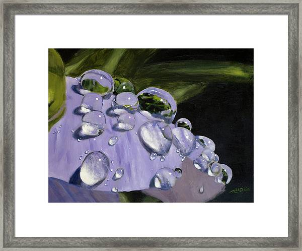 To See A World In A Drop Of Dew Framed Print