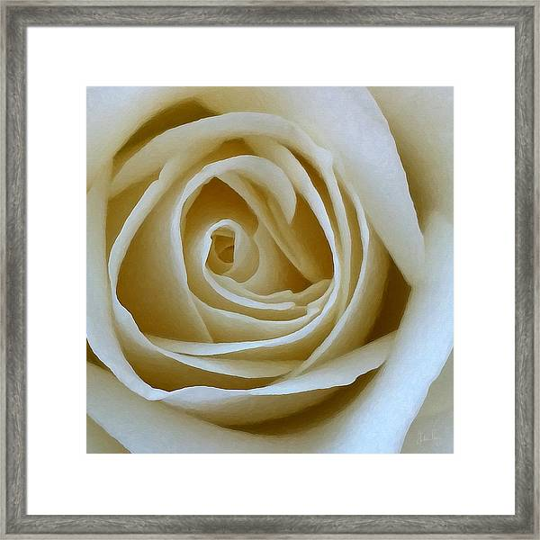To The Heart Of The Rose Framed Print