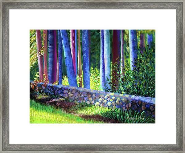 To The Left Of The Entrance To New Pond Farm Framed Print