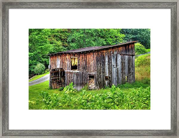 Tobacco Barn Framed Print