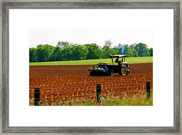 Tobacco Planting Framed Print