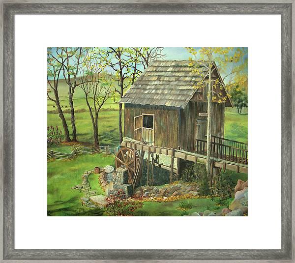 Tom Lott's Mill In Georgia Framed Print