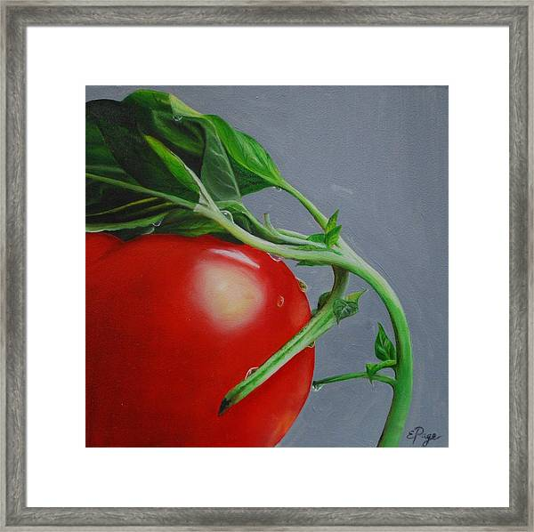 Tomato And Basil Framed Print