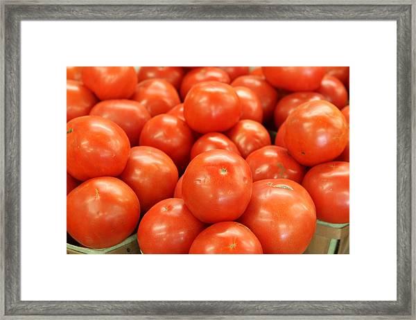 Tomatoes 247 Framed Print