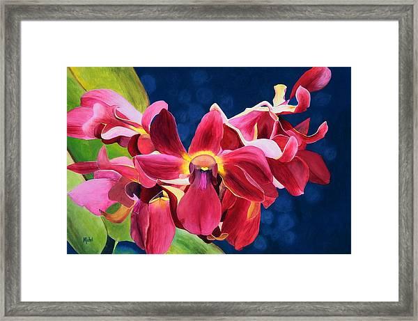 Tom's Orchid Framed Print