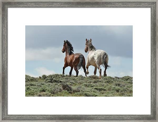 Too Beautiful Framed Print