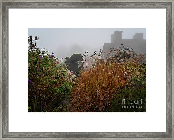Topiary Peacocks In The Autumn Mist, Great Dixter 2 Framed Print