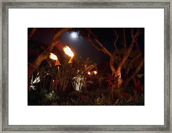 Torches Of Hawai Framed Print by George Oze