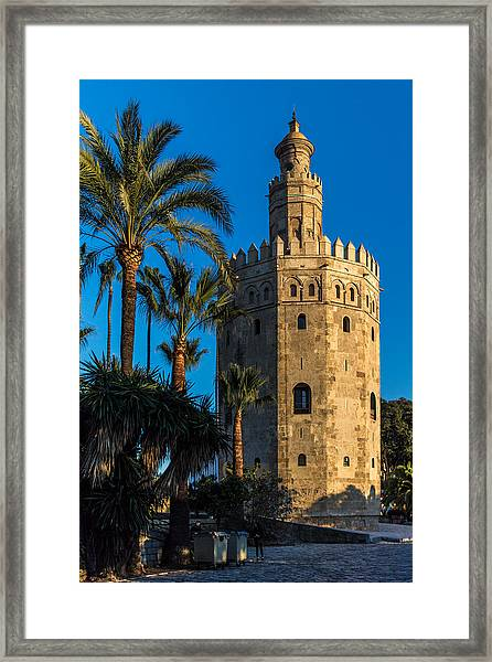Torre Del Oro Sevilla Spain Framed Print