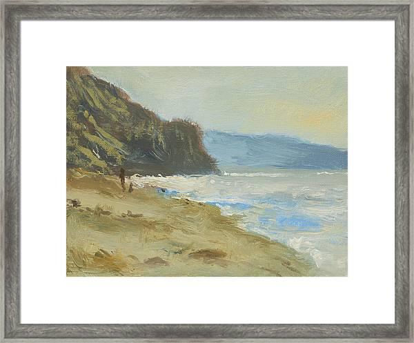 Torrey Pines Beach Framed Print by Robert Bissett